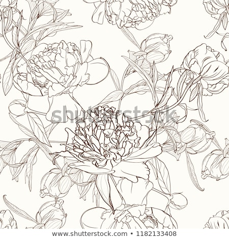 seamless floral pattern of line-art on brown background Stock photo © art9858