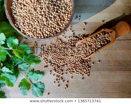 haut · vue · organique · séché · coriandre · semences - photo stock © ziprashantzi