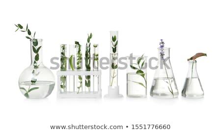 Stock fotó: Zöld · folyadék · izolált · fehér · technológia · egészség