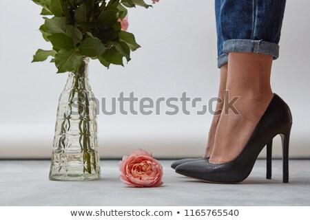 バラの花びら ハイヒール 紫色 靴 愛 ストックフォト © JamiRae