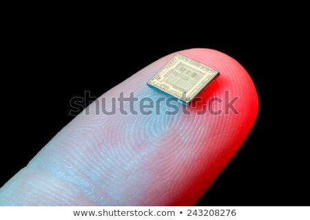 シリコン · マイクロチップ · 先頭 · 表示 · マイクロプロセッサ · ワッフル - ストックフォト © shawnhempel