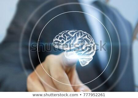 Pulsanti cervello organo illustrazione bianco sfondo Foto d'archivio © bluering