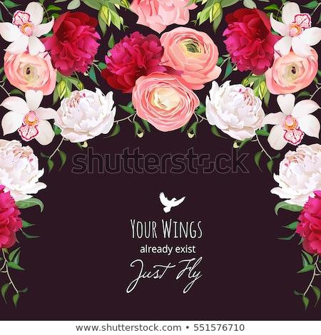 üdvözlőlap flamenco stílus virág nyár szövet Stock fotó © carodi