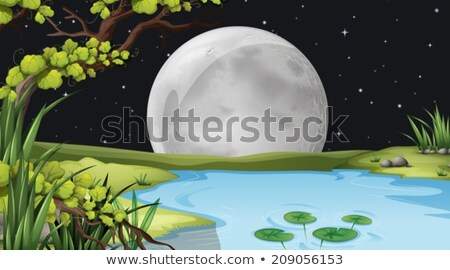 A pond under the fullmoon Stock photo © bluering