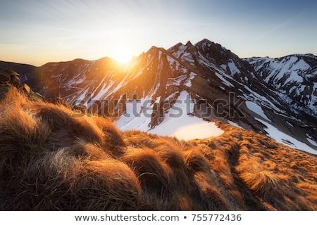 Panoramisch landschap vulkanisch bergen centraal Frankrijk Stockfoto © tilo