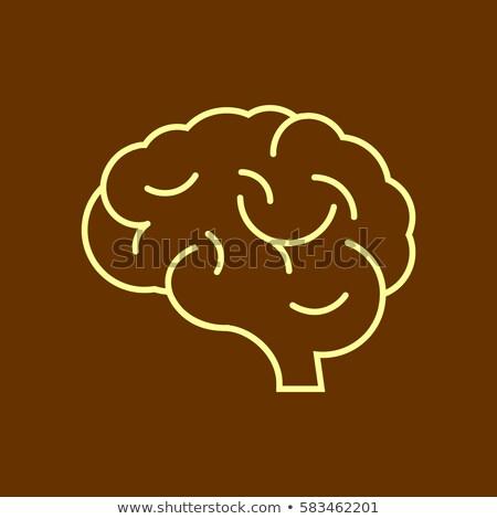 Icona testa psicologia mente umani Foto d'archivio © adrian_n