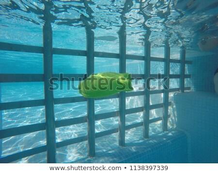 Genel kauçuk balık oyuncak yüzme havuzu Stok fotoğraf © stevanovicigor