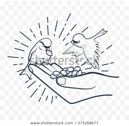 Linear silhouette  feeding birds from seeds hand Stock photo © Olena