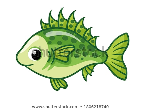 Stock photo: fish, marine and river animal, fish product food