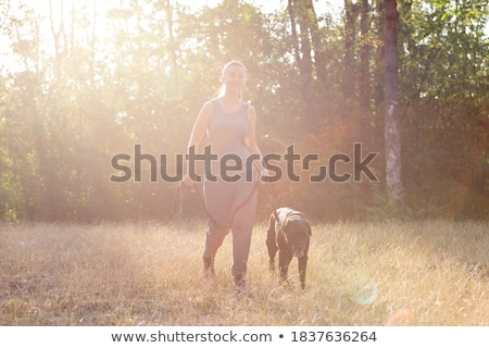 woman running and jogging with dog in green summer park and wood stock photo © blasbike