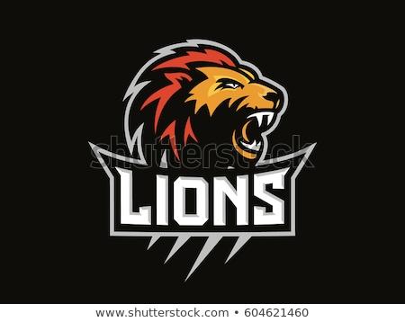 Lion Sports Mascot Angry Face Stock photo © Krisdog