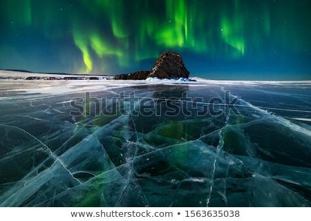 fény · hóesés · fagyott · tó · mögött · ágak - stock fotó © Mps197