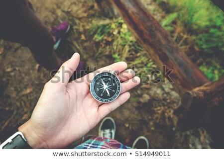 Kéz tart iránytű erdő közelkép nő Stock fotó © wavebreak_media