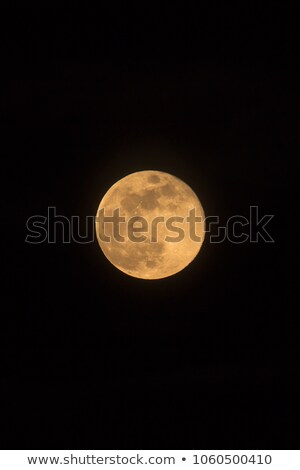 Blue Moon Rising Photo Dimensions Portrait Stock photo © suerob
