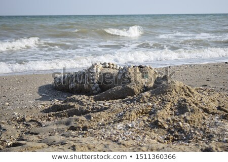 mermaid lying on sand stock photo © kakigori
