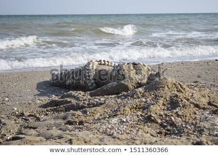 Sereia areia belo coral pérolas coroa Foto stock © Kakigori