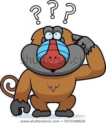 Desenho animado estúpido babuíno ilustração gráfico Foto stock © cthoman