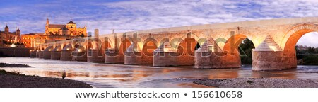 Night panorama of Cordoba with Mosque Cathedral    Stock photo © benkrut