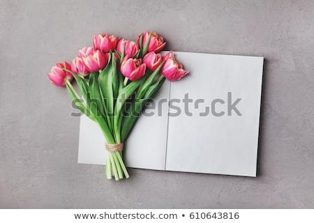 Różowy tulipany notatnika otwarte bukiet tulipan Zdjęcia stock © Lana_M