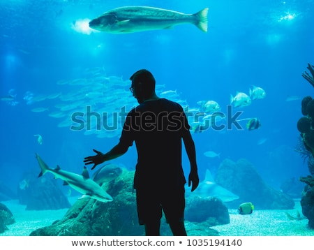 Oceanarium Underwater World. Group of People Watching Fish in a Oceanarium. Beauty of the Lisbon Stock photo © matimix