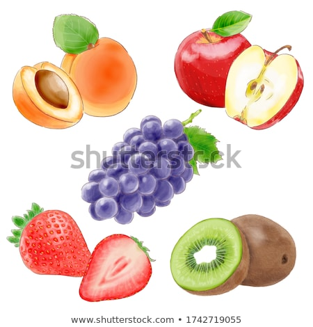 apricot strawberry and kiwi on green background watercolor illustration stock photo © conceptcafe