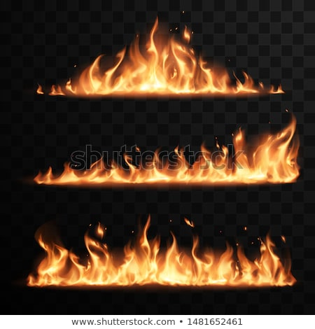 Realistic Design Burning Blaze Element Vector Stockfoto © pikepicture