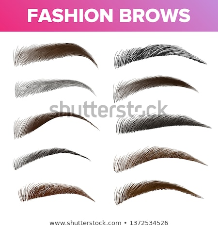 Fashion Brows Various Shapes And Types Vector Set Stock photo © pikepicture