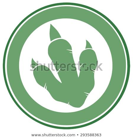 Dinosaurus voetafdruk groene cirkel label ontwerp Stockfoto © hittoon
