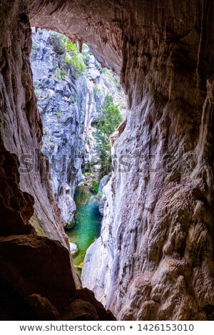 Jaskini okno na zewnątrz lasu zatoczka kanion Zdjęcia stock © lovleah