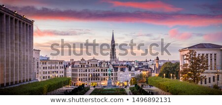 Royal Palace of Brussels at sunset blue hour Stock photo © frimufilms