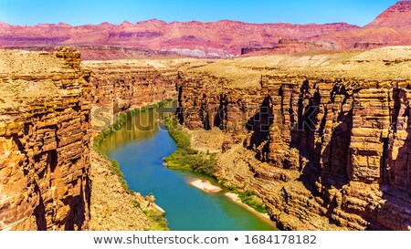 Puente Grand Canyon Arizona parque EUA hierba Foto stock © prill