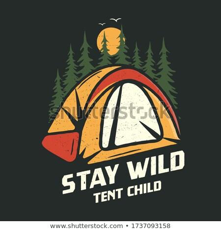 Camping graphic for T-Shirt, prints. Vintage hand drawn patch emblem. Retro summer travel landscape, Stock photo © JeksonGraphics