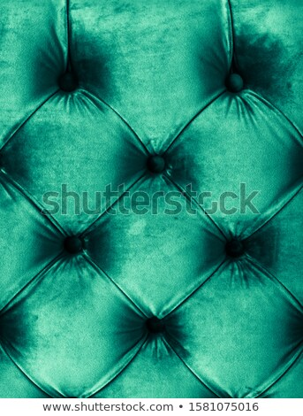 Emerald luxury velour quilted sofa upholstery with buttons, eleg Stock photo © Anneleven