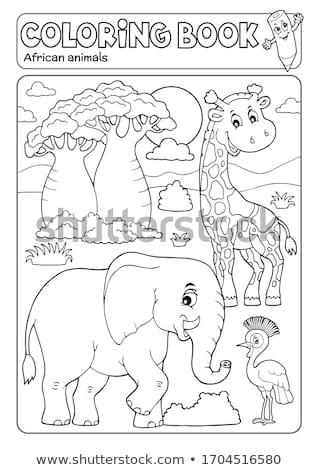 Livro para colorir africano fauna árvore livro sol Foto stock © clairev