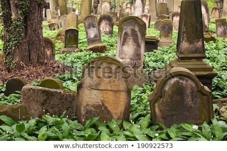 новых кладбище Краков Польша исторический Сток-фото © borisb17
