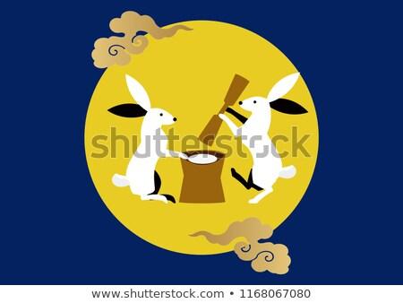 Lunar rabbit Stock photo © sahua