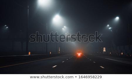 Brumeux autoroute humide faible visibilité Photo stock © pancaketom