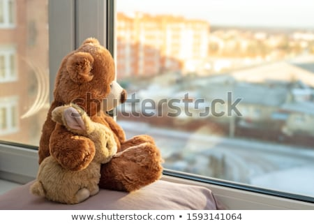 a couple of bears stock photo © mybaitshop