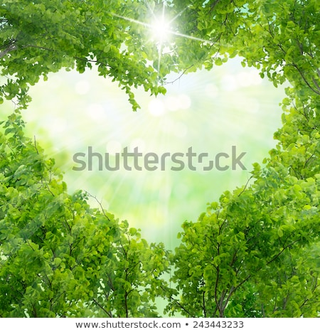 Valentine floral green background with heart stock photo © Elmiko