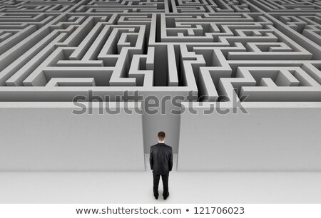 A businessman at the entrance to a maze  stock photo © digitalstorm