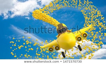 vliegen · geïsoleerd · witte · vector · sport - stockfoto © RAStudio