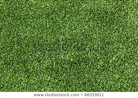 High resolution artificial turf, green grass image Stock photo © REDPIXEL