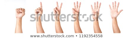 counting man hands 0 to 5 isolated on white background stock photo © oly5