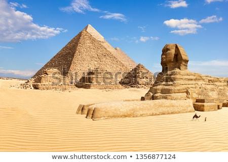 piramis · Belize · ősi · égbolt · természet · kő - stock fotó © bbbar