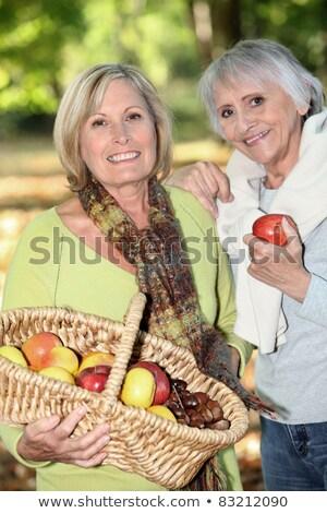 Nők gyűlés almák család fa mosoly Stock fotó © photography33