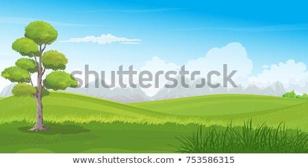 Lush Rolling Hill Landscape Stock photo © ca2hill