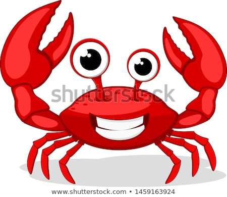 Grappig krab cartoon strand oceaan Rood Stockfoto © dagadu