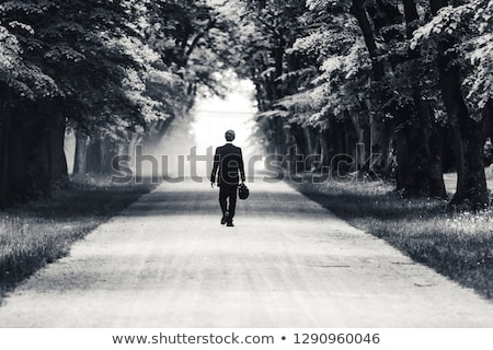 dusty road with alone tree stock photo © ryhor