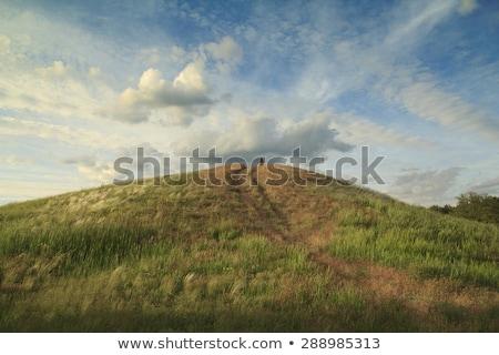 Herbeux colline faible herbe gazon isolé Photo stock © Suljo