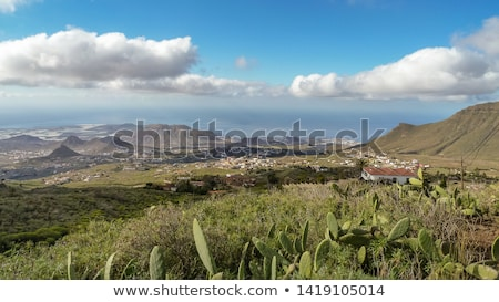 Arona Cactus mountain in Tenerife south Stock photo © lunamarina